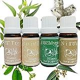 Ressources Naturelles Set de 4 x 10 ml Huile Essentielle Rhume Fatigue