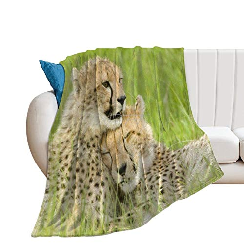 Throw Blanket for Bed Flannel Blankets Sweet Couple Cheetah Big Cat Wild Animal Lightweight Ultra Soft for All Season Farmhouse Decorative Blanket for Couch Sofa Travel Birthday Gift 60x80 Inch