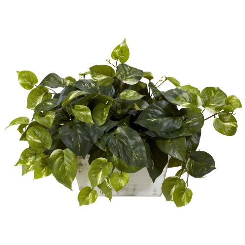 "Nearly Natural 6713 Pothos with White Wash Planter Decorative Silk Plant, Green,20.5"" x 12"" x 6"""
