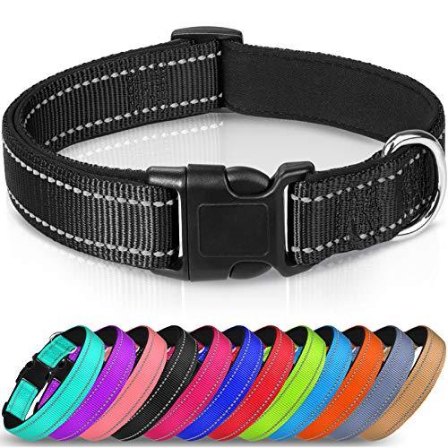 Joytale Hundehalsband aus Nylon, Reflektierend Halsband Hund mit Weich Neopren Gepolstert für Welpen Kleine Hunde,Schwarz