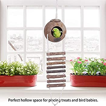 Nid de perroquet coquille de noix de coco, nid d'oiseau coquille de noix de coco nid d'oiseau durable, 2 tailles avec échelle de corde animaux perroquets animaux de compagnie pour oiseaux(Section 2)