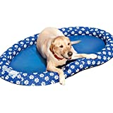 SwimWays Spring Float Paddle Paws Dog Pool Float - Large (65 lbs and...