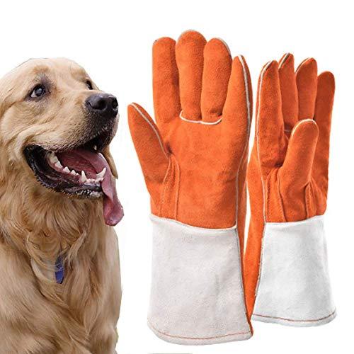 HGFLYF Handling-Handschuhe, bissfest, atmungsaktiv, für Reptilien-Schutzhandschuhe, für Hunde, Katzen, Vögel, Schlange, Eidechse, Bissfeste Schutzhandschuhe, Größe L, Large
