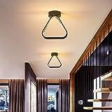 BFMBCHDJ Luces de techo LED para pasillo de entrada Pasillo Hogar Dormitorio Lamparas De Techolustre Avize Lámpara de techo Accesorios de iluminación 21x18x8cm 18W Blanco cálido