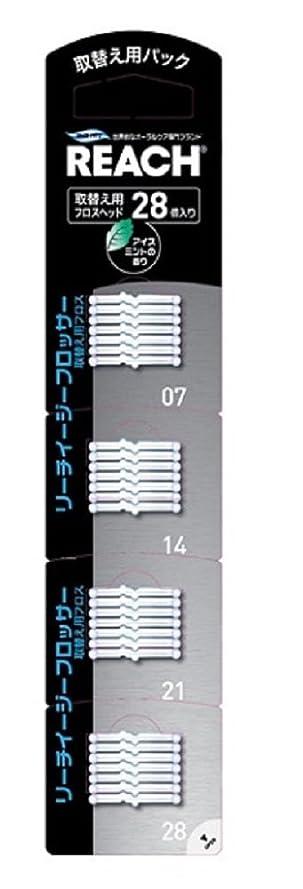 専門保存する艶リーチイージーフロッサー 付替用 28個入り