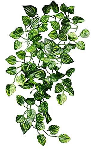 Planta para terrario Tipo Enredadera Artificial para...