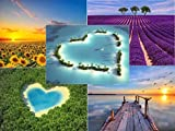 Set de cartes postales'Beaux paisajes', 5 dessins brillants, chacun 10 DIN A 6 cartes (14,8 x 10,5 cm) par Edition Colibri