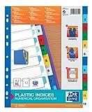 ELBA 100204813 XL Kunststoff-Register Strong-Line Zahlen 1-12 DIN A4 12-teilig Extrabreit für die ideale Ablage von Prospekthüllen