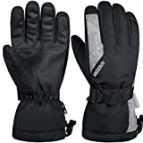 LANYI Winter Gloves for Men Women 3M Thinsulate Insulated Waterproof Ski Thermal Black Gloves Snowboard Driving Fleece Snow Gloves Cold Weather Gloves (Black, L)