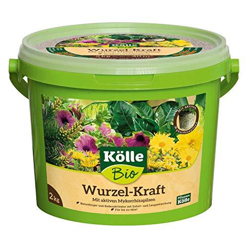 Kölle Bio Bio Wurzel-Kraft 2kg im Eimer, Wurzel-Dünger in Bio-Qualität, Düngemittel für Wurzeln, biologisch, Wurzelkraft
