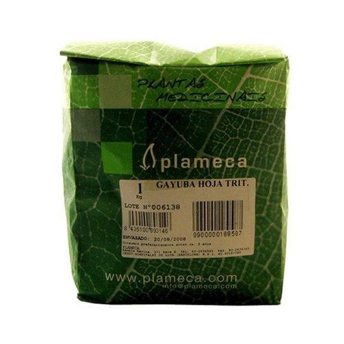 Hierba Gayuba Hoja Entera 1 kg de Plameca