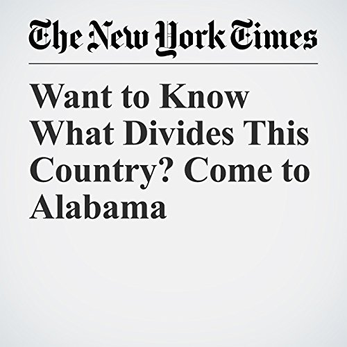 Want to Know What Divides This Country? Come to Alabama copertina