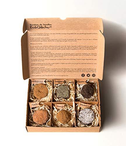 Pack 6 bombas de semillas de plantas aromáticas