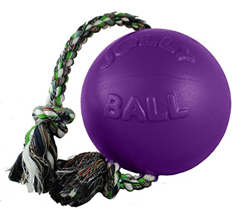 Jolly Pets RompnRoll Rope and Ball Dog Toy 6 Inches/Medium Purple