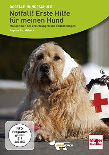 Notfall! Erste Hilfe für meinen Hund: Maßnahmen bei Verletzungen und Erkrankungen