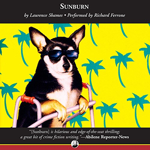Sunburn audiobook cover art