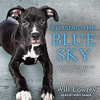 Chasing the Blue Sky audiobook cover art
