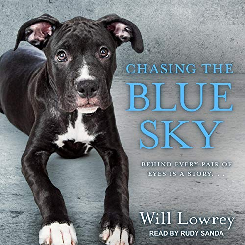 Chasing the Blue Sky Audiobook By Will Lowrey cover art