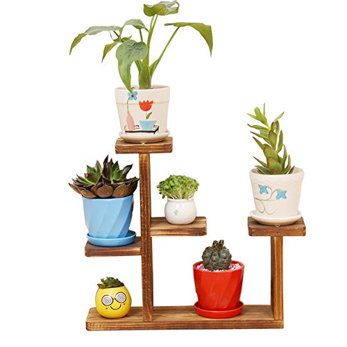 Exttlliy Wooden DIY Mini Tabletop Plant Stand Multi-Layer Concise Desktop Planter Holder for Home Office Decorative (Carbonized Color)