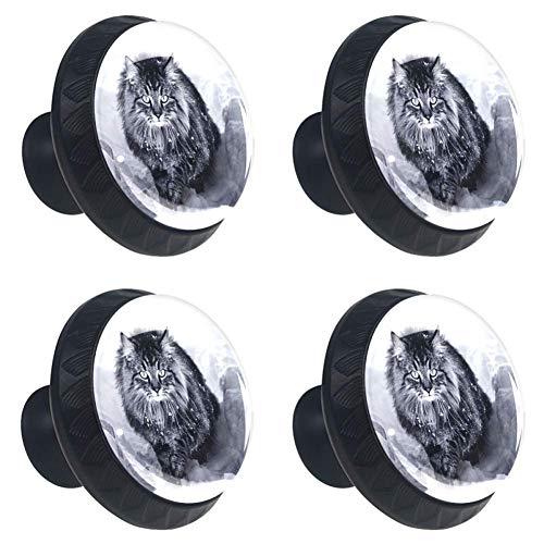 Set di 4 maniglioni per cassetti Manico con viti Un gatto norvegese della foresta nella neve per decorazioni per la casa Manopole rotonde