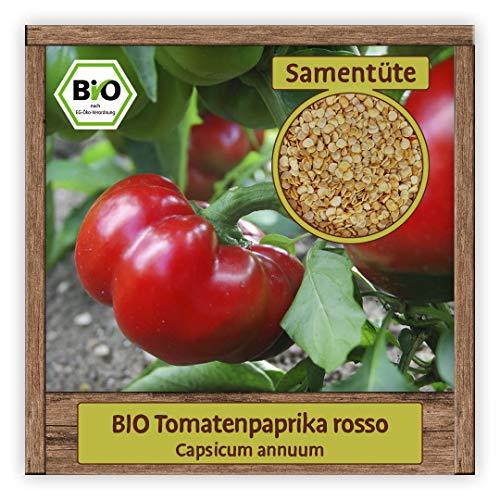 BIO Tomatenpaprika Samen Sorte rosso (Capsicum annuum) Gemüsesamen süße Paprika Saatgut