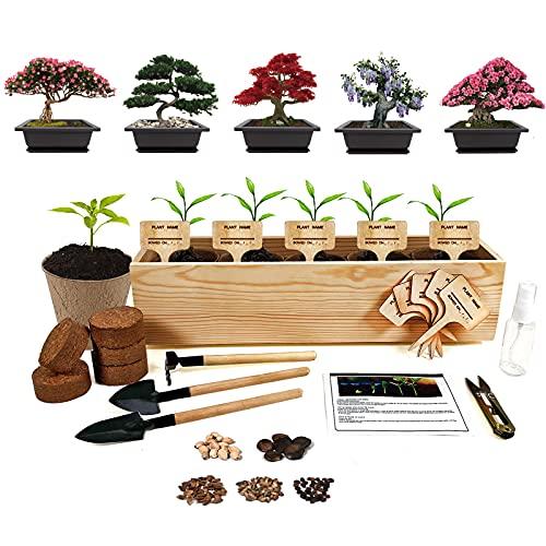 Bonsai Tree Seed Starter Kit - 5 Bonsai Seeds with Complete Growing Kit - Peat Pots, Soil, Pruner, Watering, Garden Tools, Markers & Guide - Garden Gift for Women & Men