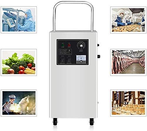 Raxinbang Purificador de Aire Generador De Ozono For El Hogar, Comercial 10.000 MG/H O3 Purificador De Aire con Temporizador Programable For La Escuela De Hotelería-esterilización Rápida