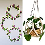 Wooden Hexagon Plant Hangers, Wall Trellis For Climbing & Trailing Vines & Flowers, Indoor Plant Decor, Crafts, Projects, Self-Assemble Trellis/Hanger, Vertical Garden, Modern Display, DIY, 12 Pcs Set