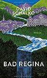 Bad Regina: Roman von David Schalko