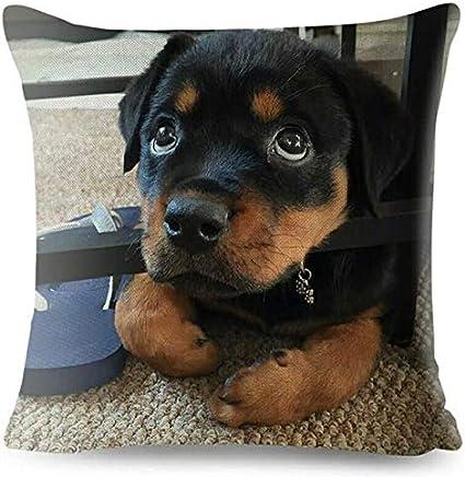 MiniMini Germany Car Rottweiler Cushion Sofa Covers Dog Pillow Loyalty Home Decor Pet,1