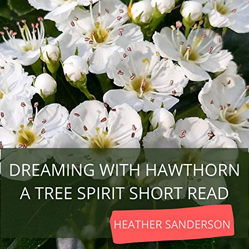 Dreaming with Hawthorn Audiobook By Heather Sanderson cover art