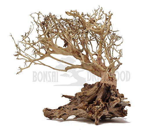Bonsai Driftwood Aquarium Tree on Rock (8 Inch) Natural, Handcrafted Fish Tank Decoration   Helps Balance Water pH Levels, Stabilizes Environments   Easy to Install