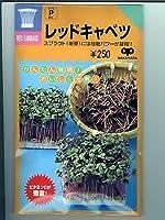 レッドキャベツ スプラウト用のレッドキャベツ種子です