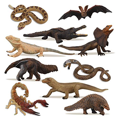TOYMANY 10PCS Tropical Reptile Animal Figurine Toy Set - Cold Blooded Amphibians Safari Animal Figures Set with Dragon Lizard Snake-Christmas Birthday Gift Party Favor School Project for Kids Toddlers