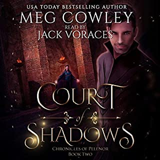 Court of Shadows (A Sword & Sorcery Epic Fantasy) cover art