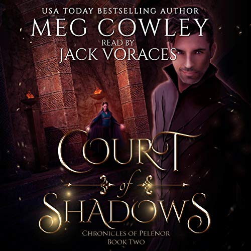 Court of Shadows (A Sword & Sorcery Epic Fantasy) audiobook cover art