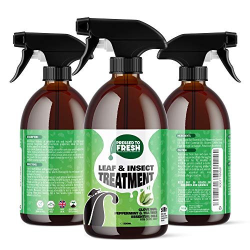 PRESSED TO FRESH – Natural Leaf & Insect Treatment Spray – Kills Aphids & Caterpillars - Prevents Leaf Spots, Powdery Mildew & Rust – Fungicide - Organic Castile Soap And Essential Oils - 500ml