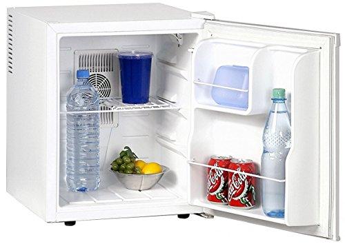 Silva-Homeline KB 480 TE - Nevera termoeléctrica con Capacidad para 42 L (5-15 °C, para Comer, Bebidas, Vino)