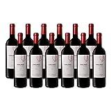 Pruno - Vino Tinto - 12 Botellas