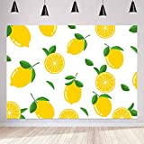 Fruit World Backdrop Lemon Photography Background Themed Party Photo Booth YouTube Backdrop MEETSIOY 7x5ft LXMT898