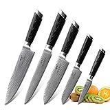 NANFANG BROTHERS Cuchillo de Cocina Profesional | 5 pzas | Cuchillo de Acero de Damasco VG-10 de 67 Capas, Cuchillo de Chef Ultra Afilado con Wood Mango