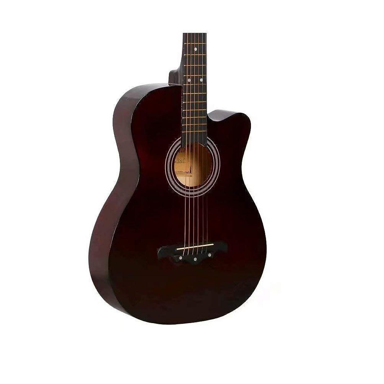 ロゴインデックス幻想的ギター 初心者 入門 アコースティック クラシックギター