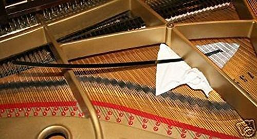 COLIBYOU Grand Piano Soundboard Cleaner, Keep Piano Clean