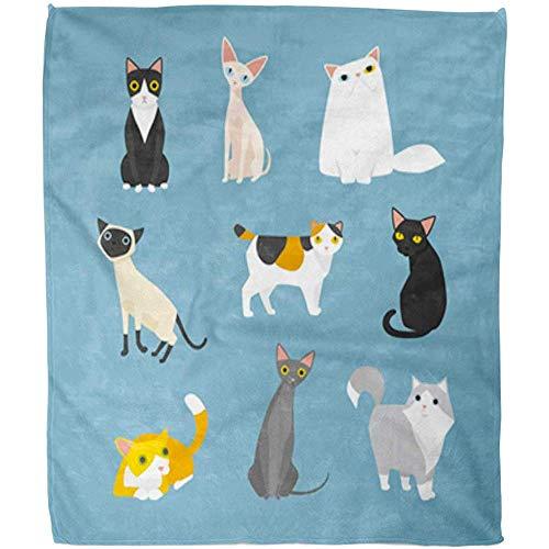 Throw Blanket Gatito Azul Gato Mascota Colorida Sphynx Siamés Simple Hotel Turco De Angora Manta Cálida Manta Cálida Sala De Estar Blanda Cama Difusa Sofá Manta De Vellón Oficina 102X127Cm