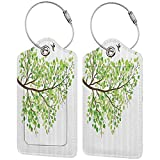 Multicolor luggage tag Apartment Decor Collection Branch with Hummingbirds in Seasonal Vivid Colors Spring Freedom Nature Artwork Hanging on the suitcase Green White Brown W2.7' x L4.6'