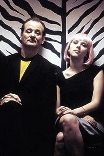 Lost in Translation Bill Murray Scarlett Johansson 24x36 Movie Poster in zebra elevator