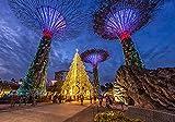 Rompecabezas para adultos, 1000 piezas, Singapore Evening Parks Gardens by The Bay Design Jigsaw Puzzle para adultos, familias y niños. Juguete educativo para decoración del hogar (70 x 50 cm)
