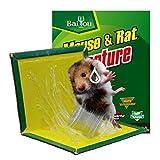3 trampas de pegamento para ratones para ratas, ratones, plegables de hielo, muy eficientes, protección del medio ambiente, placas de plástico, color 12pcs