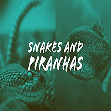 Snakes and Piranhas (feat. YB3)