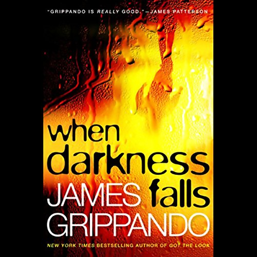 When Darkness Falls                   By:                                                                                                                                 James Grippando                               Narrated by:                                                                                                                                 Jonathan Davis                      Length: 10 hrs and 28 mins     153 ratings     Overall 4.0